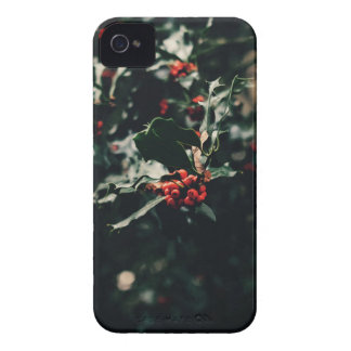 Weihnachtsstechpalme iPhone 4 Cover