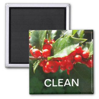 Weihnachtsstechpalmen-sauberer Spülmaschinen-Magne Quadratischer Magnet