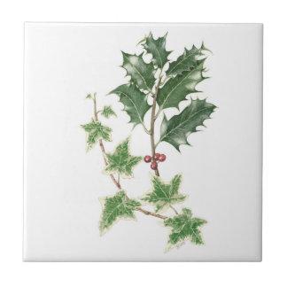 Weihnachtsstechpalmeu. -efeusprig-botanische keramikfliese
