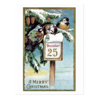 """""""Weihnachtsvogel-"""" - Postkarte 1900"""