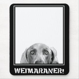 Weimaraner Nation: Weimaraner in einem Kasten! Mauspads