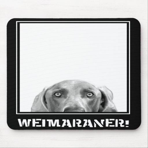 Weimaraner Nation: Weimaraner in einem Kasten! Mousepad