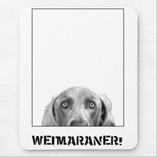 Weimaraner Nation: Weimaraner in einem Kasten! Mousepads