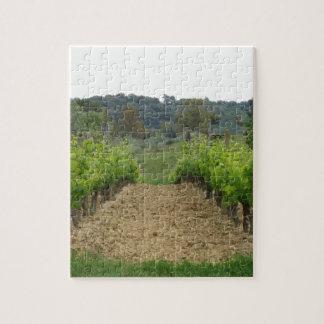 Weinberg im Frühjahr. Toskana, Italien Puzzle