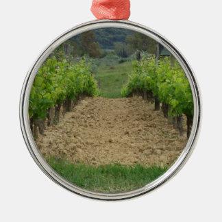 Weinberg im Frühjahr. Toskana, Italien Silbernes Ornament