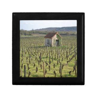 Weinberg in Burgunder Frankreich Erinnerungskiste