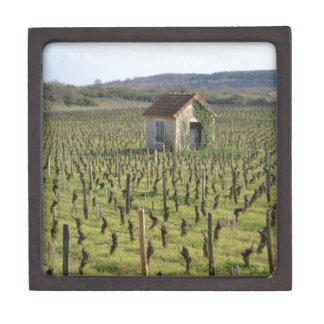 Weinberg in Burgunder Frankreich Schachtel