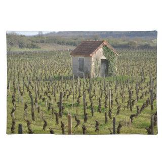 Weinberg in Burgunder Frankreich Stofftischset