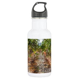 Weinberg in Napa Valley Kalifornien Edelstahlflasche
