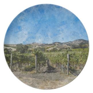 Weinberg in Napa Valley Kalifornien Teller
