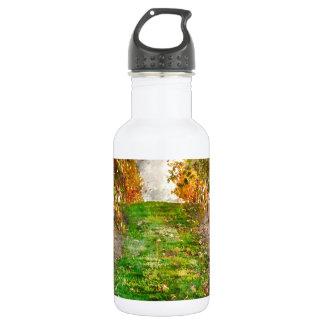 Weinberg in Napa Valley während des Falles Trinkflasche
