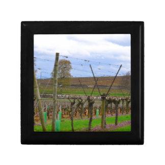 Weinberg, Weinstöcke die französische Landschaft Erinnerungskiste