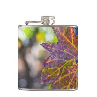 Weinstock in der Herbst-Jahreszeit Flachmann