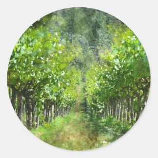 Weinstöcke im Frühjahr in Napa Valley Kalifornien Runder Aufkleber