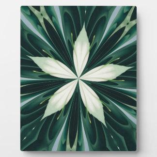 Weiß-Blätter in einem grünen Waldkaleidoskop Fotoplatte