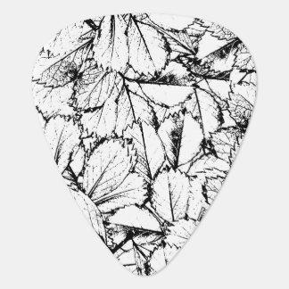 Weiß-Blätter Plektron