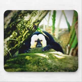 Weiß-Gesichtiger Saki Affe Mousepad