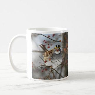 Weiß-throated Spatz Kaffeetasse