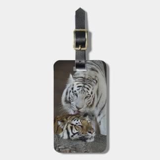 Weiß und Brown-Tiger-Stillstehen Adress Schild