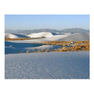 Weiß versandet nationales Monument, Querdünen 3 Postkarte