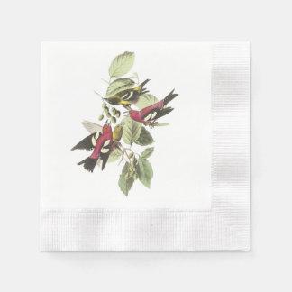 Weiß-winged Gegenwechsel durch Audubon Papierserviette