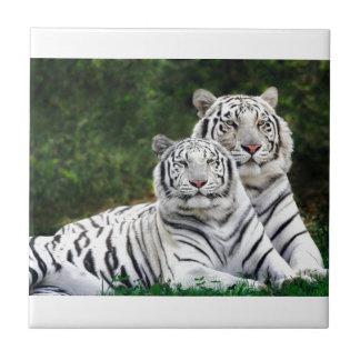 Weiße bengalische Tiger Keramikfliese
