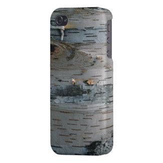 Weiße Birken-Baum-Natur-Telefon-Kasten iPhone 4/4S Hüllen