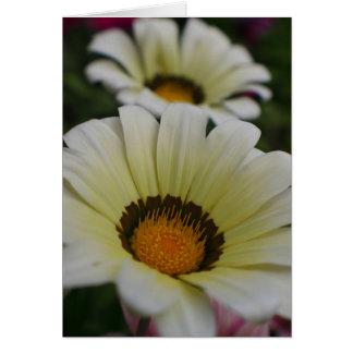 Weiße Blumen Grußkarte