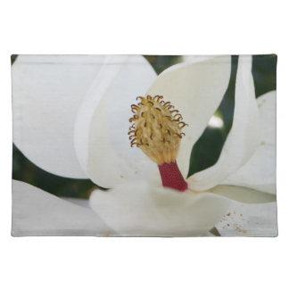 Weiße Blumenblüten-Tischsets der südlichen Stofftischset