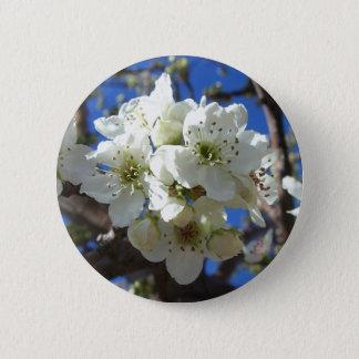 Weiße Blüte gruppiert sich Frühlings-blühenden Runder Button 5,7 Cm
