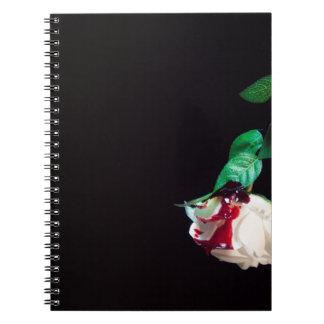 Weiße blutrote Seite der Rose Notizblock