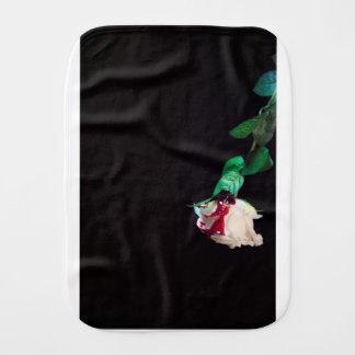 Weiße blutrote Seite der Rose Spucktuch