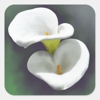 Weiße Calla-Lilien-Blumen Quadratischer Aufkleber
