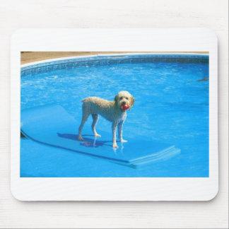 Weiße Cockapoo Hundeschwimmen auf einem Floss Mousepad
