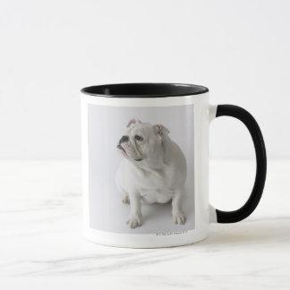 Weiße englische Bulldogge Tasse