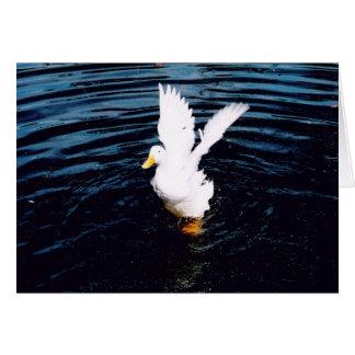 Weiße Ente, die seine Flügel flattert Karte