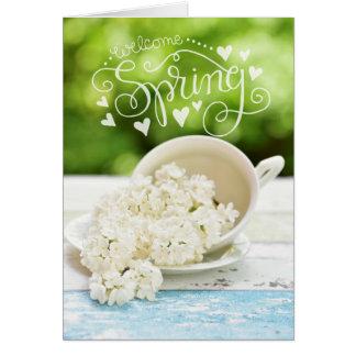 Weiße Flieder-Frühlings-Blumen Stilllife Karte
