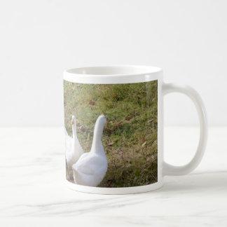 Weiße Gänse Kaffeetasse