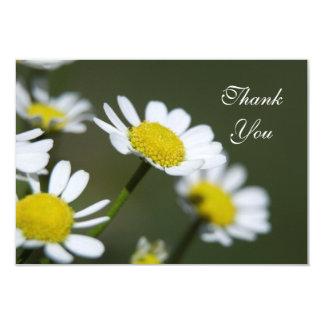 Weiße Gänseblümchen danken Ihnen Anmerkungen - Karte