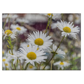 Weiße Gänseblümchen Glas Schneidebrett
