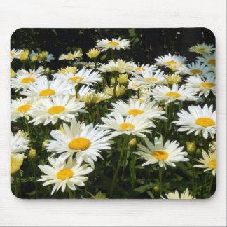 Weiße Gänseblümchen Mauspad