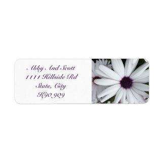 Weiße Gänseblümchen-Rücksendeadressen-Aufkleber Rücksende Aufkleber