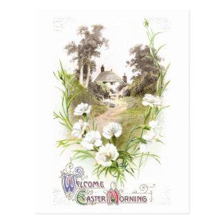 Weiße Gartennelken Vintages Ostern Postkarte