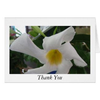 Weiße gelbe Blume Karte