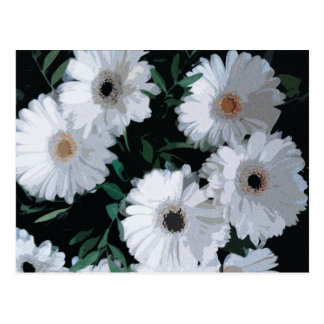Weiße Gerbera-Gänseblümchen Postkarte