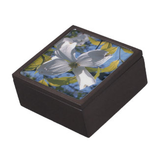 Weiße Hartriegel-Blumen-Prämien-Geschenkboxen Schmuckkiste