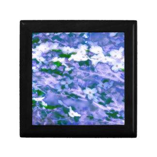 Weiße Hartriegel-Blüte im Blau Erinnerungskiste