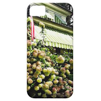 Weiße Hydrangeas durch grüne gestreifte Markise Barely There iPhone 5 Hülle