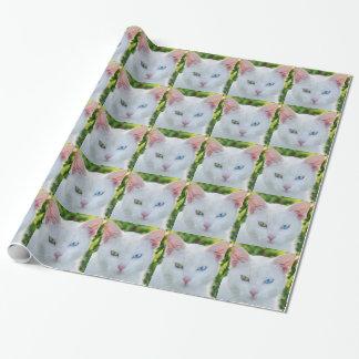 Weiße Katze, blaues Auge, grünes Auge, Geschenkpapier