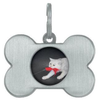 Weiße Katze, die rotes Spielzeug ziehend spielt Tiermarke